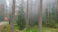 Ostrów Mazowiecka - W Wykrocie (gm. Myszyniec) w pobliżu Kurpiowskiej