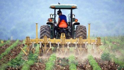 Ostrów Mazowiecka - Od 15 października tego roku, rolnicy, którzy ponieśli w gos