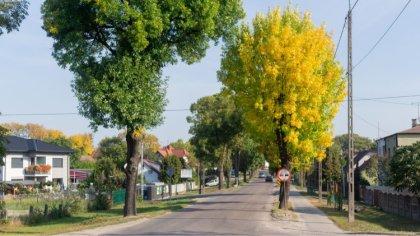 Ostrów Mazowiecka - Czwartek będzie ciepły i słoneczny. W naszym regionie temper