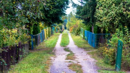 Ostrów Mazowiecka - 78 rodzinnych ogródków działkowych otrzyma wsparcie z budżet