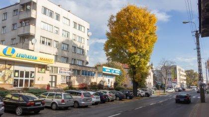 Ostrów Mazowiecka - 1 listopada zapowiada się słonecznie w całym województwie a