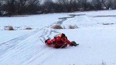 Ostrów Mazowiecka - Dwie sarny zostały uwięzione na zamarzniętym rozlewisku rzek