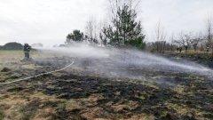 Ostrów Mazowiecka - Do kolejnego pożaru traw doszło w powiecie ostrowskim. Tym r