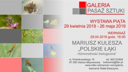 Ostrów Mazowiecka - Ostrowska galeria Pasaż Sztuki zaprasza na kolejną wystawę.