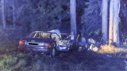 Ostrów Mazowiecka - Samochód osobowy wczoraj wieczorem zakończył jazdę na drzewi