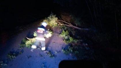 Ostrów Mazowiecka - Strażacy z OSP Boguty tej nocy zostali zaalarmowani o powalo