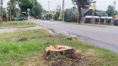 Ostrów Mazowiecka - Skrzynka skarg, pochwał, pytań i pomysłów:Cała uli