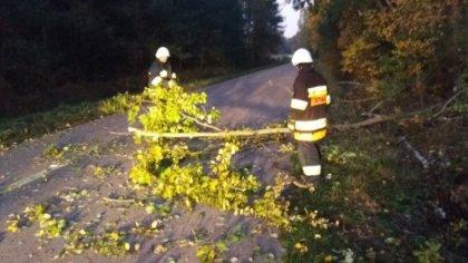 Ostrów Mazowiecka - Kolejna interwencja strażaków z OSP Boguty-Pianki dotycząca