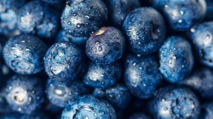 Ostrów Mazowiecka - Jesz owoce leśne, grzyby bez ich dokładnego umycia? Uważaj,