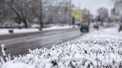 Ostrów Mazowiecka - Na ulicach Ostrowi Mazowieckiej znów skrzypi pod nogami. Zim