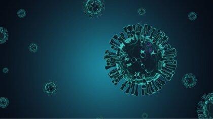 Ostrów Mazowiecka - Jak wynika z najnowszego raportu zakażeń koronawirusem opubl