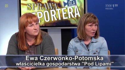 Ostrów Mazowiecka - W