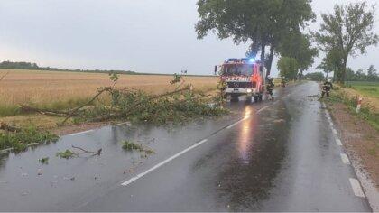 Ostrów Mazowiecka - We wtorek 13 lipca strażacy z Ochotniczej Straży Pożarnej w