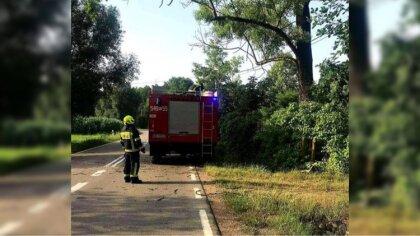 Ostrów Mazowiecka - Strażacy usuwają skutki po przejściu silnego wiatru na teren