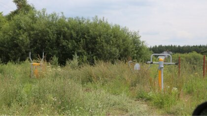Ostrów Mazowiecka - Wiele czytelników skarży się na zaniedbane w miejscowości St