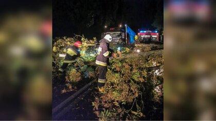 Ostrów Mazowiecka - Po przejściu silnego wiatru strażacy zostali zadysponowani w