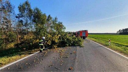 Ostrów Mazowiecka - Strażacy z Ochotniczej Straży Pożarnej w Starym Lubotyniu zo