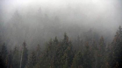 Ostrów Mazowiecka - W rejonie Rysów w Tatrach turysta spadł w przepaść. Ratownik