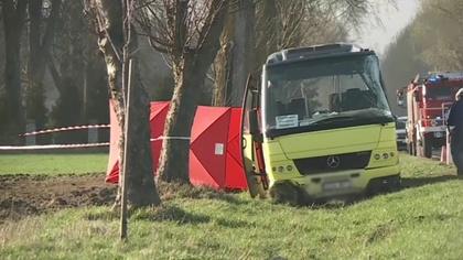 Ostrów Mazowiecka - Samochód ciężarowy zderzył się z autobusem na drodze krajowe